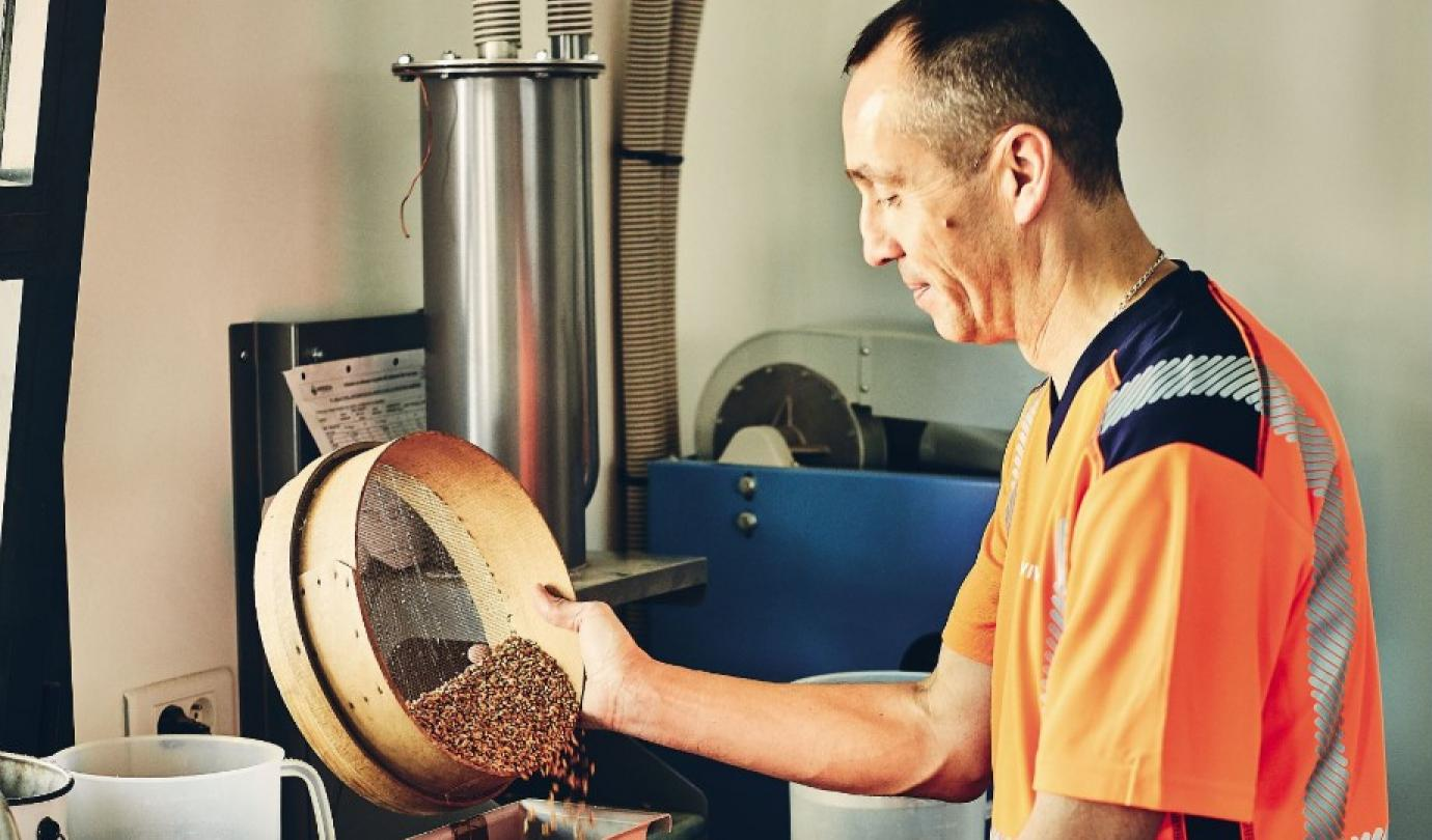 comment faire du malt d'orge-cereales-biere-fabrication